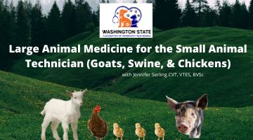 Large Animal Medicine for the Small Animal Technician (Goats, Swine, & Chickens)
